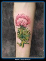 Thistle by ritch-g