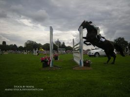 British Show Jumping 85 by mapal-stock