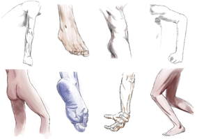 male body practice by norrling