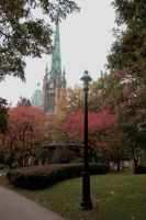 fall a park by lullabymydreams
