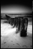 The power of nature BW by mjagiellicz