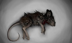 Dead mouse by wingedwolf94