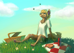 Picnic by Jahary