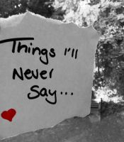 Things I'll never say by Atom001
