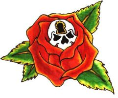 rose skull by soldadoporvida