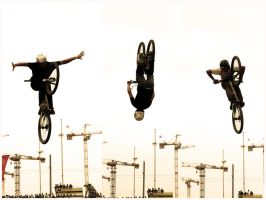 FISE 2009 : IV by WindDesert