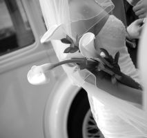 Wedding detail by lucky-april