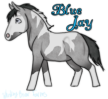 Jay Jay don't be Blue by Rising-High-Ranch
