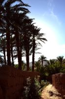 Morocco's Dream by SweetHurricane
