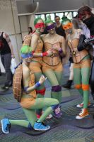 Megacon 2013 61 by CosplayCousins