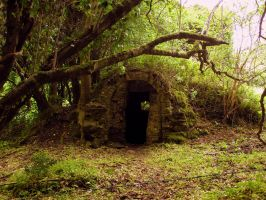Radagast's House by D1scipl31974