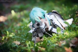 Sword Art Online - Sinon by Marco-Photo
