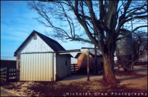shed_9425 by piggah