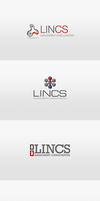 Lincs Management Logo Design samples by awaisfarooq