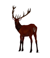 Red Deer for Xemi by IckyDog
