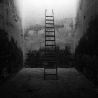 The ladder by TotoRino