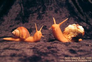 Snail sculptures 1 by hellena