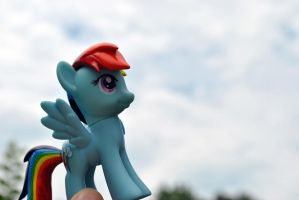 Rainbow Dash takes to the sky by Roscofox