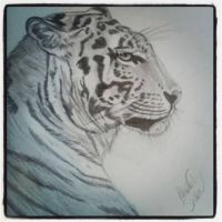 Tiger by WesCal