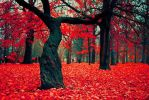 Red Leaves by loulou3897