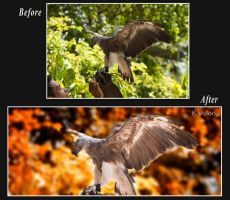 Before and After by Khaled-vision