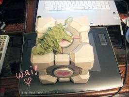 Companion Cube by sohlol