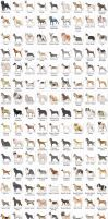 Dog Breeds by k-hots