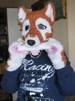 Fursuit One by Kighto