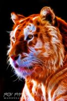 Golden Tiger: Fractalius Re-Edit (Ver.2) by nerdboy69