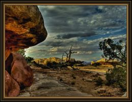 Evening at Canyonlands by papatheo