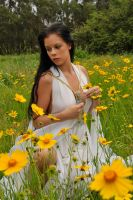 Stacey - field of flowers 1 by wildplaces