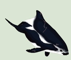 Kendra pixel PC 1 of 3 for Iiduh by Oreo-The-Orca12