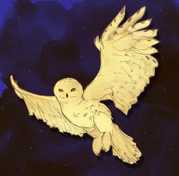Hedwig by spike-kree