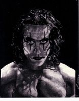 Crow,Brandon Lee,scratch board by jubeijrl