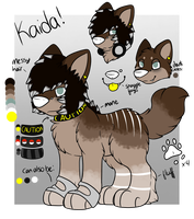 Kaida Reference 2014 by CollectionOfWhiskers
