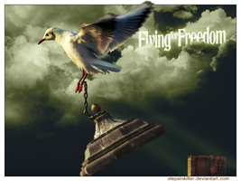 Flying for Freedom by Mr-Bastos