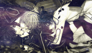 Vampire Knight Banner by Pancerna