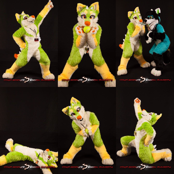 Official Confurgence photos - Eight the mutt by TrelDaWolf