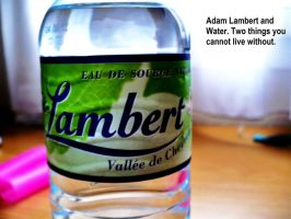 Water and Lambert. by GoThrowUpARainbow
