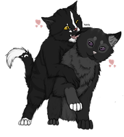 Nightpaw and Ravenshadow by LadyLirriea