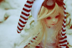 First snow -2 by Naiara-photobook