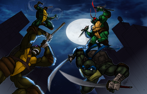 Teenage Mutant Ninja Turtles by aKmEToOnS