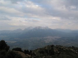 View from monte Ortobene by davdiana