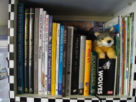 My room - wolf books details 2 by Canisography