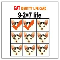 Cat life by Grohai