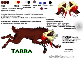 Official Tarra Reff by ScarsAndStories