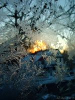 Cold Dawn by jewels4665