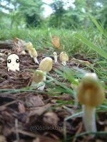 Amongst the Mushrooms. by blackbirdpie