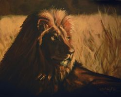 Lion my painting by cliford417