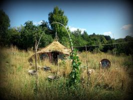 celtic roundhouse in the garden 2 by gangahimalaya